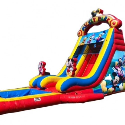 Vinyl Material Mickey Theme Bouncer castle
